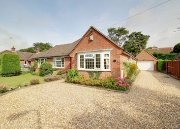 Thumbnail 4 bed detached bungalow for sale in Fir Tree Cottage, Newbury, West Berkshire