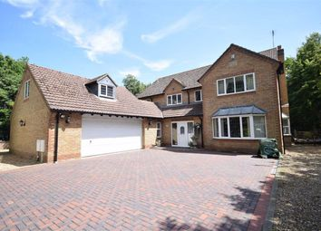 5 bed detached house for sale in Overstone Lane, Overstone, Northampton NN6