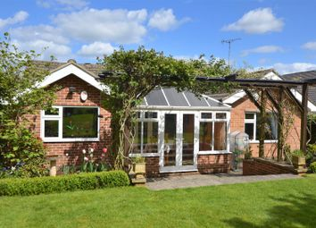 Thumbnail 4 bedroom detached bungalow for sale in Hall Farm Road, Duffield, Belper