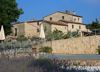 Thumbnail 14 bed farmhouse for sale in Borgo L'otium, Siena, Tuscany, Italy