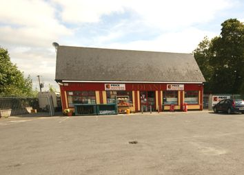 Thumbnail Property for sale in Deane's Shop, Tinryland, Carlow
