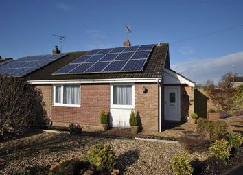 Thumbnail 2 bed semi-detached bungalow to rent in Friars Avenue, Stone