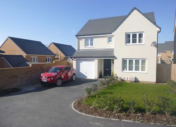 Thumbnail 4 bed detached house to rent in Shellduck Close, Bude