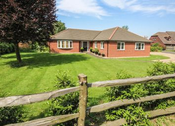 Thumbnail 4 bed detached bungalow for sale in The Birches, Red Lodge, Bury St. Edmunds