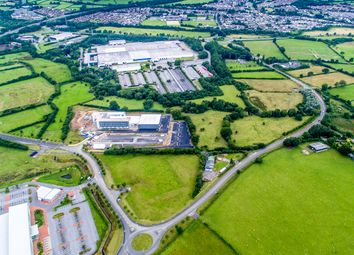 Thumbnail Industrial for sale in Pencoed Technology Park, Junction 35, Bridgend