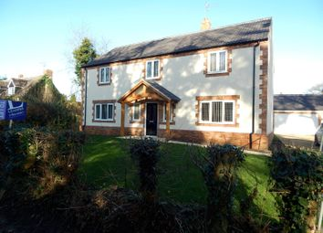 Thumbnail 4 bed detached house to rent in The Close, Watton Road, Stow Bedon, Attleborough