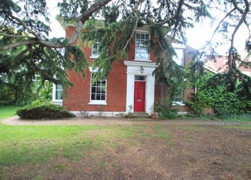 Thumbnail 4 bed semi-detached house to rent in Rectory Road, Colchester, Essex