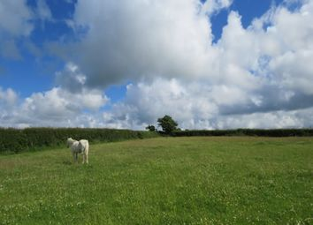 Main Road, Ashmansworthly Woolsery Devon EX39. Land for sale