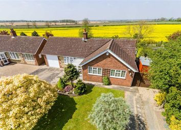 Thumbnail 3 bed bungalow for sale in Newton By Toft, Market Rasen, Lincolnshire