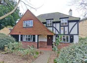 Thumbnail 4 bedroom detached house to rent in Liverpool Road, Kingston Upon Thames