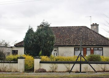Thumbnail 3 bedroom bungalow for sale in Ballyduff, Tullamore, Offaly