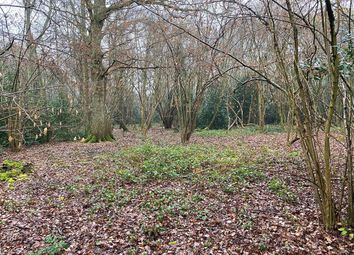 Thumbnail Land for sale in Guildford Road, Normandy, Guildford