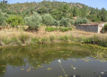 Thumbnail Farm for sale in Santana, Nisa, Portalegre, Alentejo, Portugal