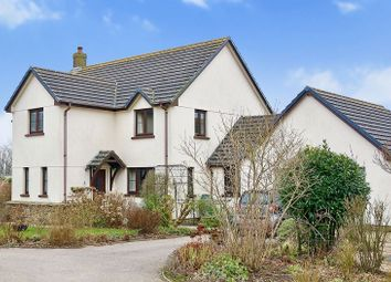 Thumbnail 4 bed detached house for sale in Sheepwash, Beaworthy