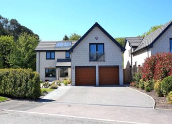 Thumbnail 5 bedroom detached house to rent in Irvinemuir Park, Drumoak