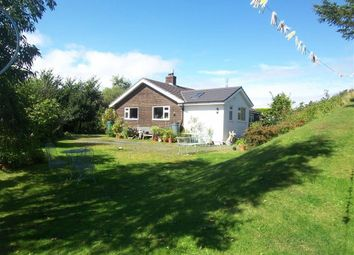 Thumbnail Bungalow for sale in Borth, Ceredigion