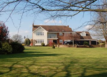 Thumbnail 6 bed farmhouse to rent in Stock Road, Stock, Ingatestone
