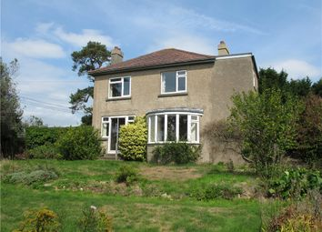Thumbnail 3 bed detached house for sale in Higher Green, Beaminster, Dorset