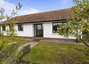 Thumbnail 3 bedroom bungalow for sale in Norwood Crescent, Belmont, Belfast