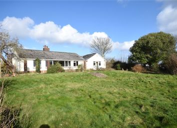 Thumbnail 4 bedroom bungalow for sale in Castle Hill, Torrington
