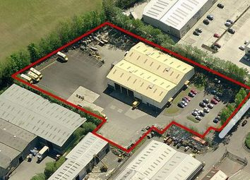 Thumbnail Industrial to let in Springtown Avenue, Londonderry, County Londonderry