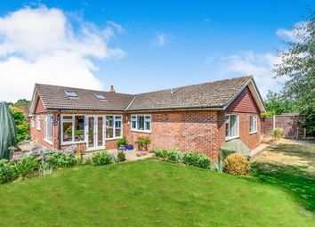 Thumbnail 4 bed bungalow for sale in Downsview Drive, Midhurst, West Sussex, .