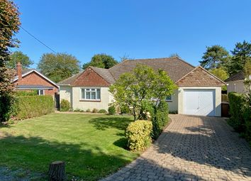 Thumbnail 3 bed detached bungalow for sale in Chestnut Walk, Little Baddow