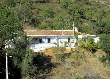 Thumbnail 3 bed finca for sale in Portugal, Algarve, Tavira
