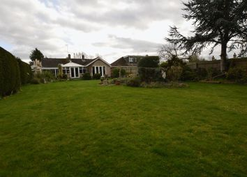 Thumbnail 4 bedroom bungalow for sale in Allerton Garth, Orton Northgate, Peterborough