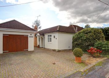 Thumbnail 4 bed detached bungalow for sale in New Road, Romsey, Hampshire