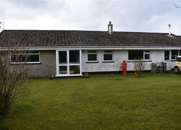 Thumbnail 3 bed detached bungalow for sale in Panteg Cross, Llandysul, Carmarthenshire
