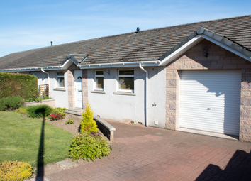 Thumbnail 3 bed semi-detached house to rent in 3 Inchgarth Street, Forfar