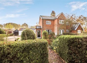 Thumbnail 3 bed semi-detached house for sale in High Green, Brooke, Norwich, Norfolk