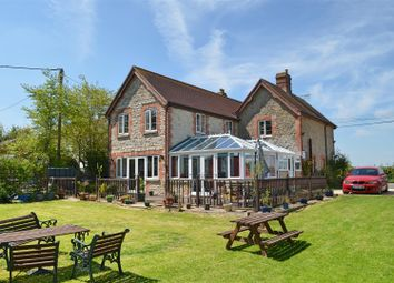 Thumbnail 5 bed cottage for sale in Pulham, Dorchester