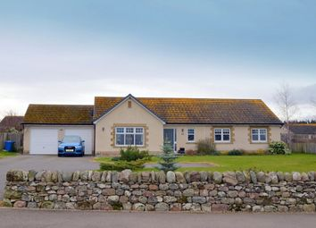 Thumbnail 4 bed detached bungalow for sale in 11 School Brae, Croy, Inverness