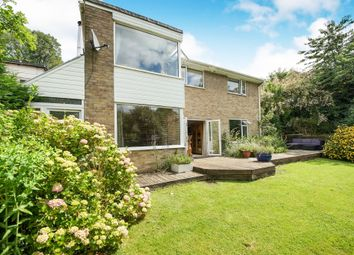 Thumbnail 4 bed detached house for sale in The Knapp, Hilton, Blandford Forum