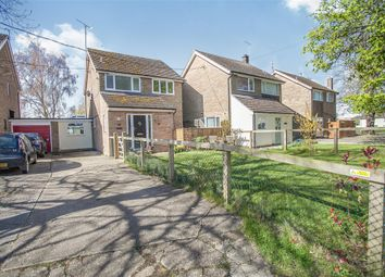 Thumbnail 3 bed link-detached house for sale in North End Road, Little Yeldham, Halstead