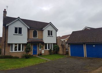 Thumbnail 4 bed property to rent in Hawthorne Avenue, Sawston, Cambridgeshire