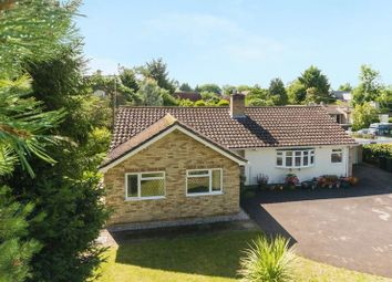Thumbnail 4 bed bungalow for sale in Faringdon Road, Shippon, Abingdon