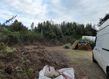 Thumbnail Land to let in St Georges, Runfold