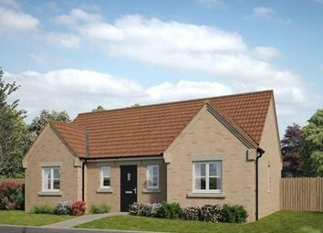 Thumbnail 3 bedroom detached bungalow for sale in Plot 1, Clement, Salterns, Terrington St. Clement, King's Lynn