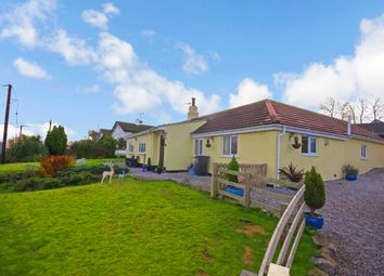Thumbnail 3 bed cottage for sale in Trelogan, Holywell