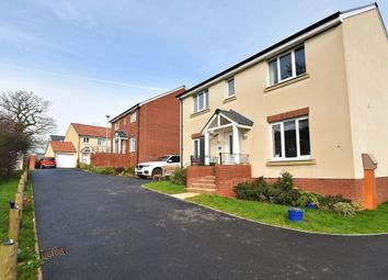 Thumbnail 4 bed detached house for sale in Pippin Share, Cranbrook, Exeter