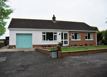 Thumbnail 3 bed detached bungalow for sale in Penparc, Cardigan, Ceredigion