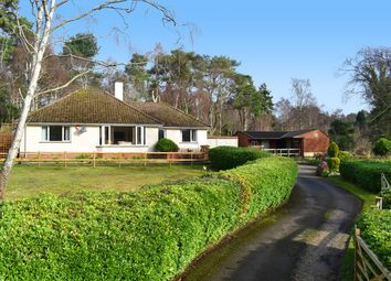 Thumbnail 3 bed bungalow for sale in Lower Sandy Down, Boldre, Lymington