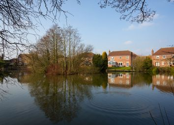 Thumbnail 5 bedroom detached house for sale in Lakeside, Acaster Malbis, York