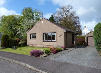 Thumbnail 2 bed bungalow for sale in St Serfs Road, Crook Of Devon
