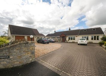 Thumbnail 5 bed detached bungalow for sale in Highcroft, Mill Lane, Wedmore, Somerset