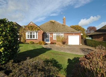 Thumbnail 3 bed detached bungalow for sale in Eden Drive, Bexhill-On-Sea, East Sussex
