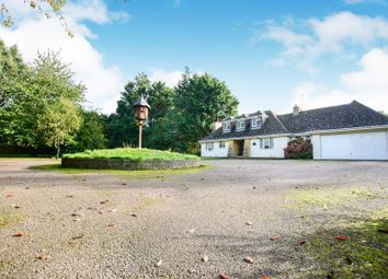 Thumbnail 4 bed detached house to rent in Little Heath Road, Fontwell